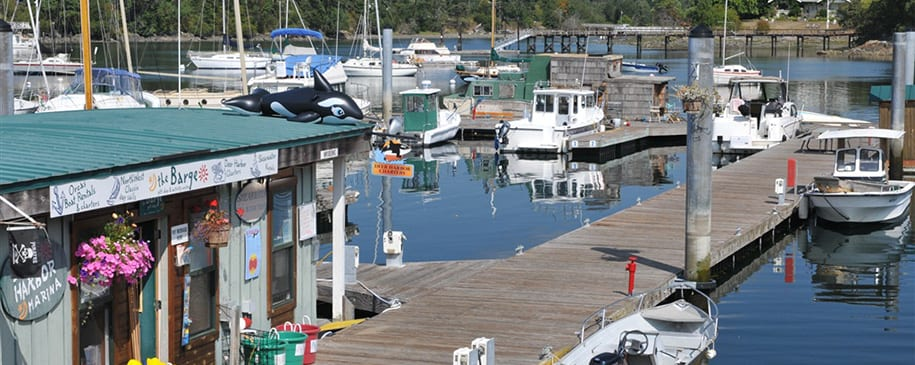Harbor Store and dock with moored boats at Deer Harbor.